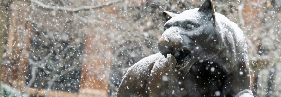 Sculpture of the Pitt Panther in falling snow near William Pitt Union.