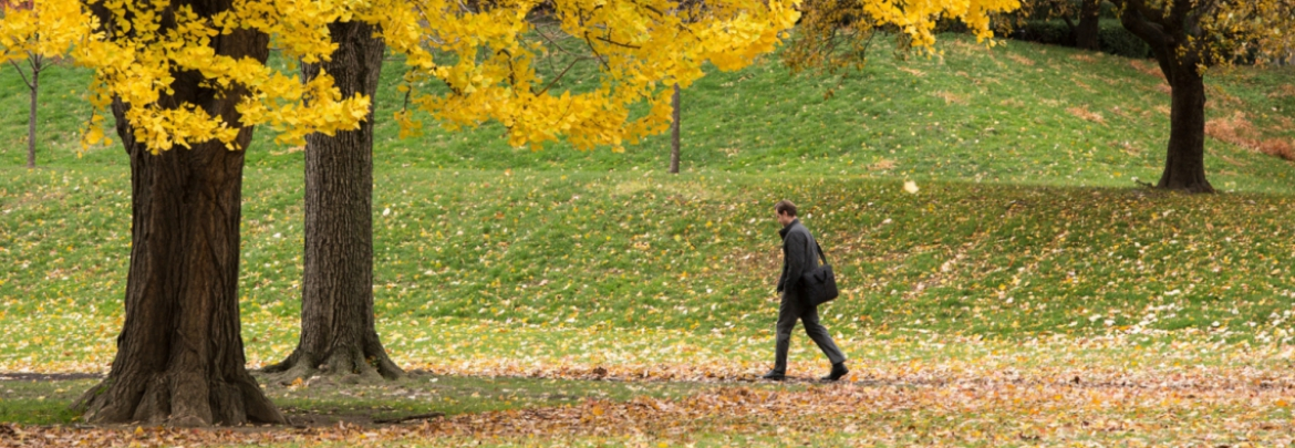 Image of a man walking on the University of Pittsburgh campus in the Fall.